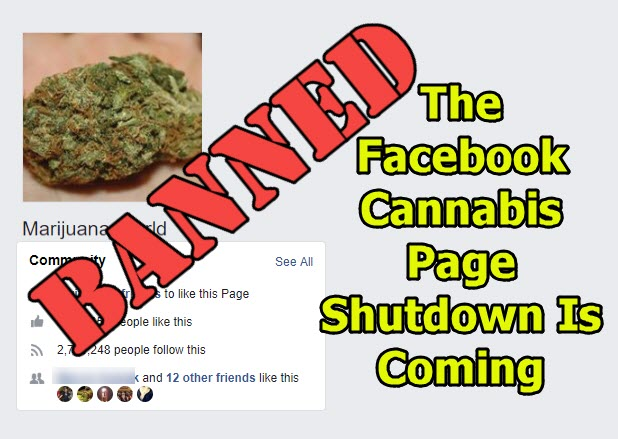 facebook cannabis pages deleted