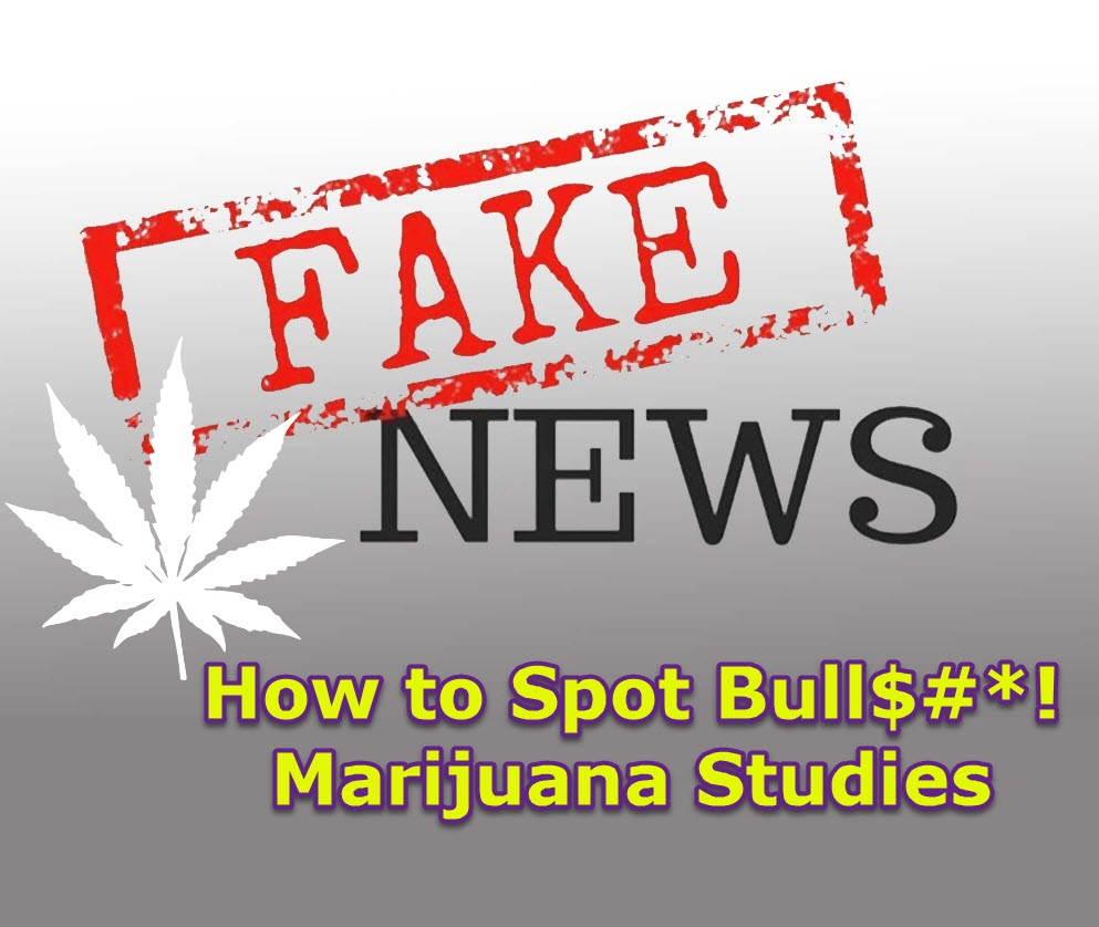 FAKE MARIJUANA STUDIES