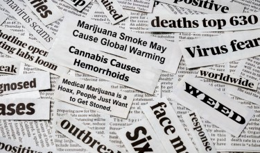 marijuana headlines for a study