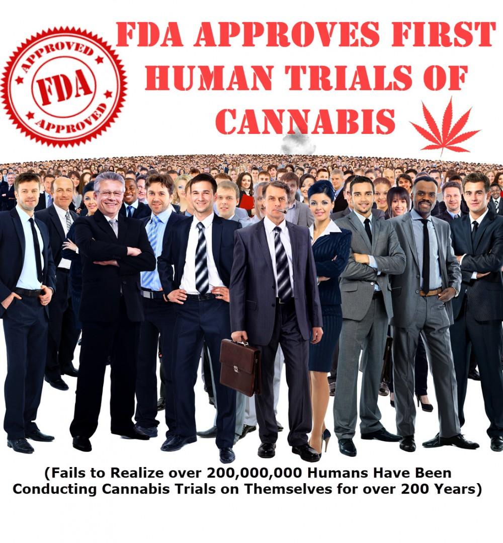 fda approves trials for marijuana