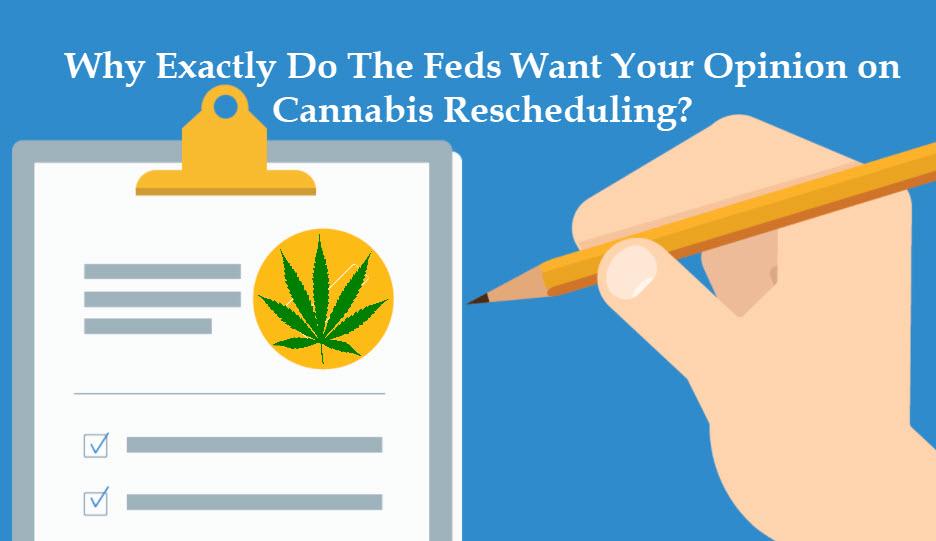 FDA on Cannabis