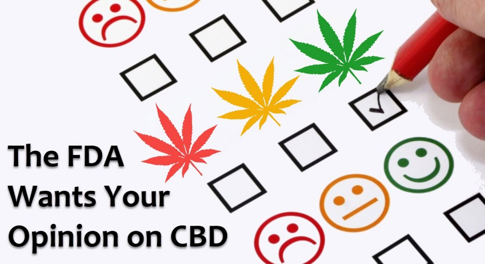 fda wants opinions on cbd
