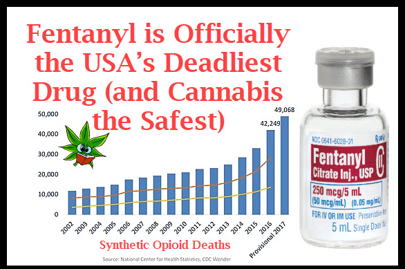 FENTANYL IS DEADLY