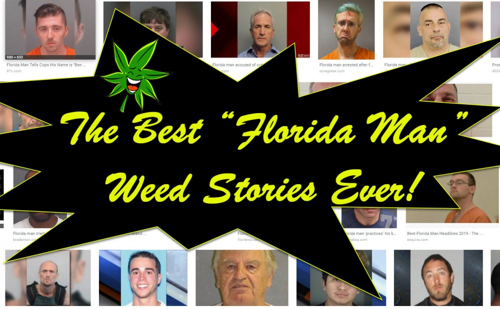 FLORIDA MAN CANNABIS STORIES