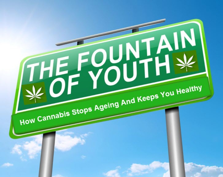 CANNABIS AS THE FOUNTAIN OF YOUTH
