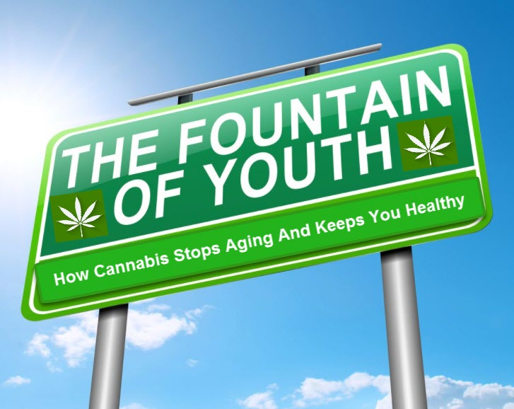 MARIJUANA IS THE FOUNTAIN OF YOUTH