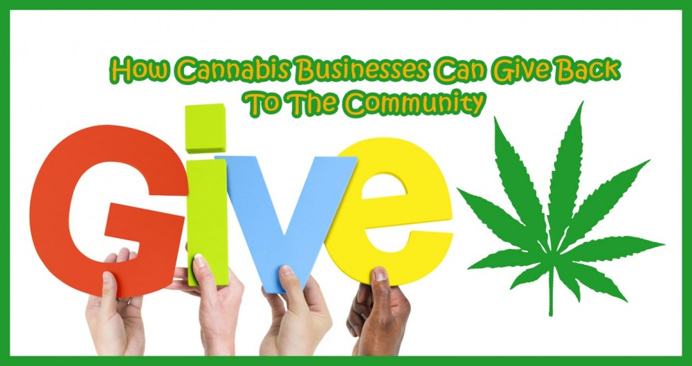 giving cannabis back