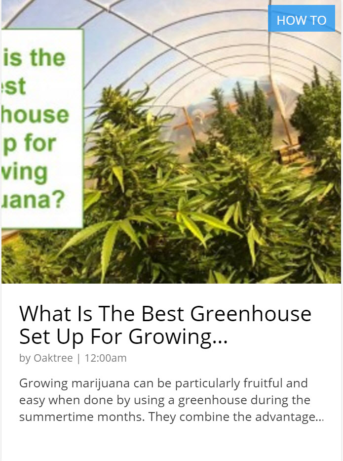 BEST GREENHOUSE SET UP FOR CANNABIS