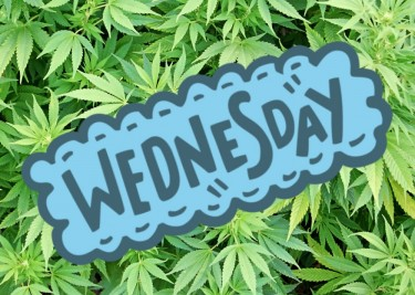 green Wednesday sales at cannabis stores