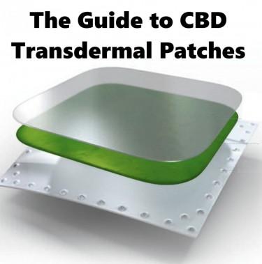 transdermal cbd guide
