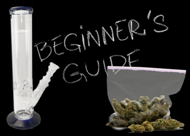 guide to cannabis for beginners