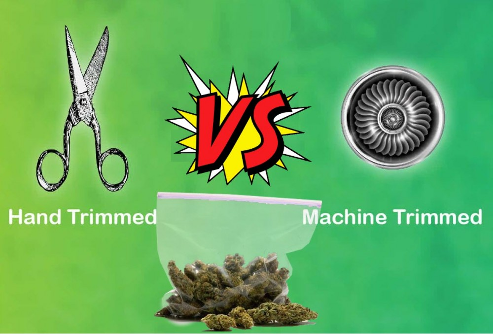 hand trimmed vs machine trimmed weed