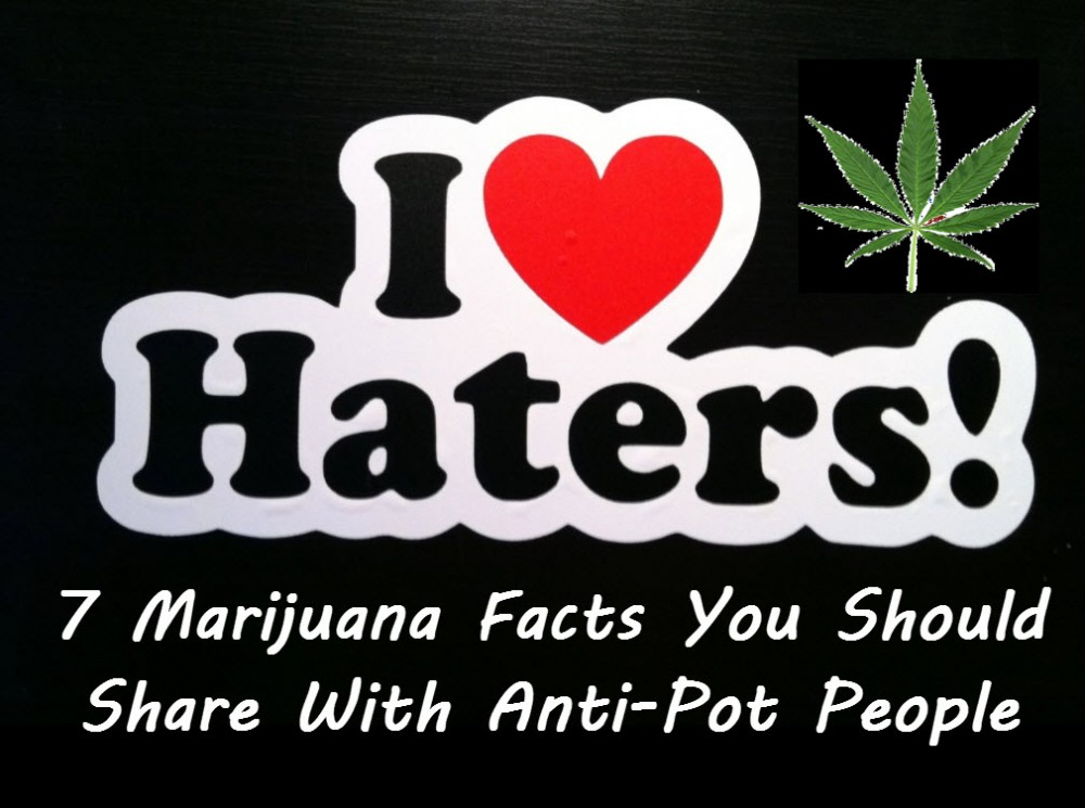 CANNABIS HATERS AND CRITICS