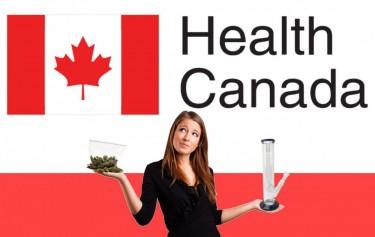 health canada on marijuana markets