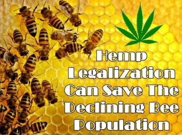 CAN LEGALIZING HEMP SAVE THE BEES