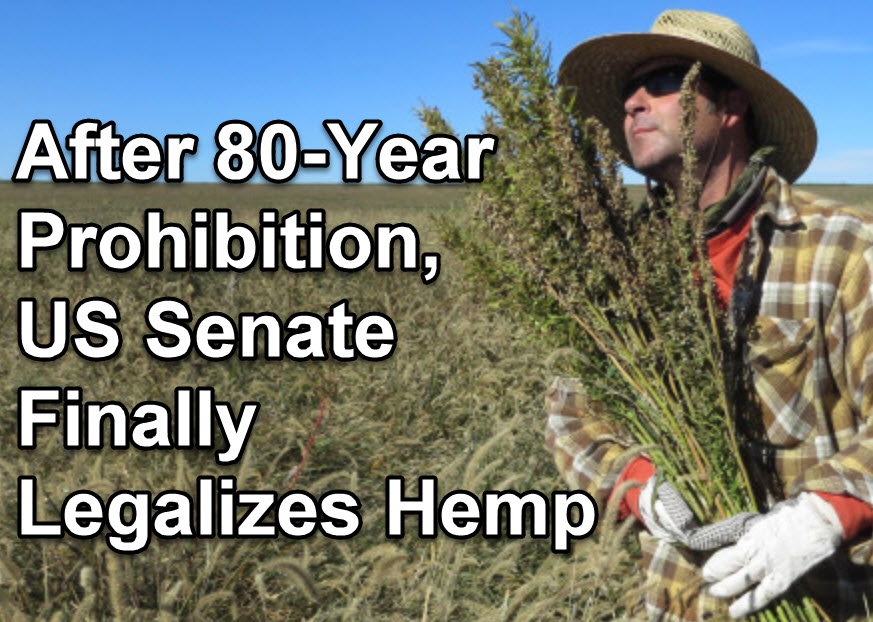 HEMP IS LEGALIZED IN AMERICA