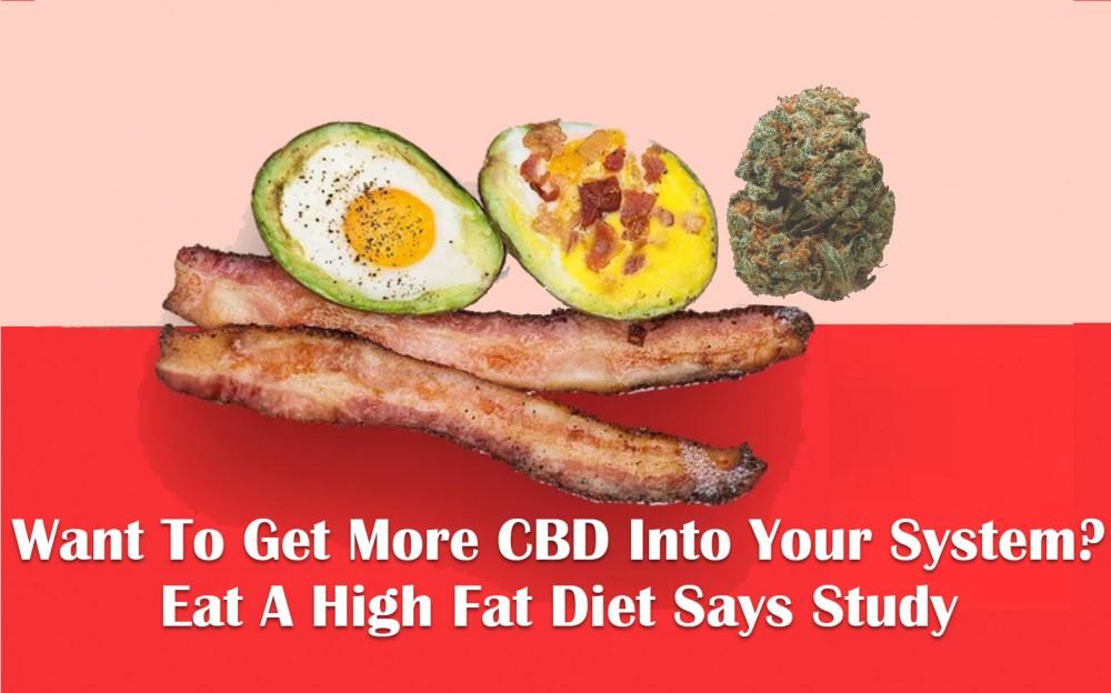 cbd high fat diet