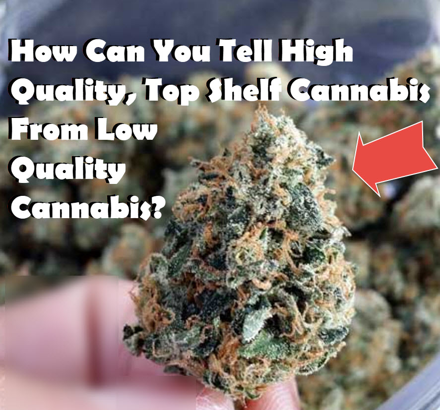 HOW TO TELL HIGH QUALITY CANNABIS FROM LOW QUALITY CANNABIS