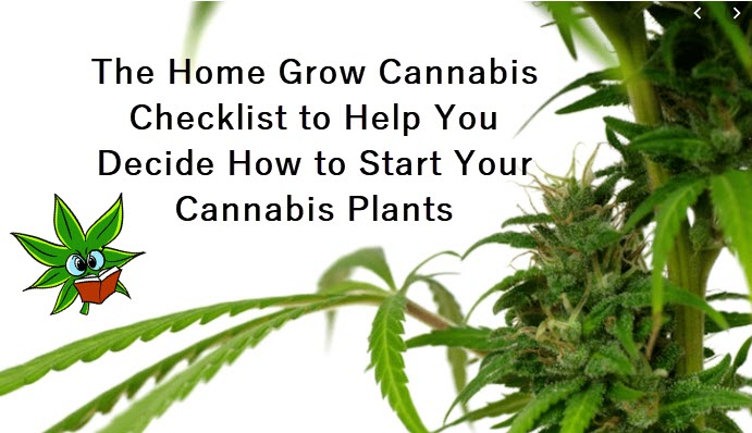 home grow cannabis checklist