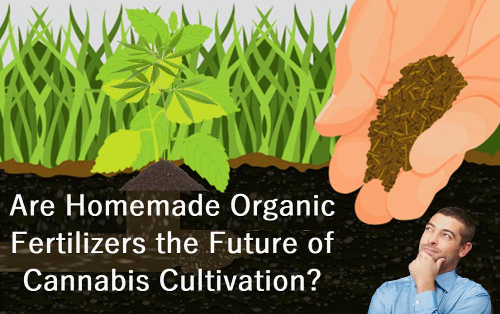 organic fertilizer for cannabis
