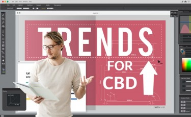 HOT CBD TRENDS