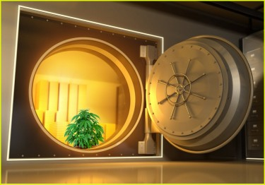 cannabis banking right now