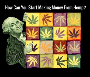HOW TO MAKE MONEY FROM HEMP