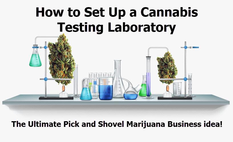 how to set up a marijuana testing lab