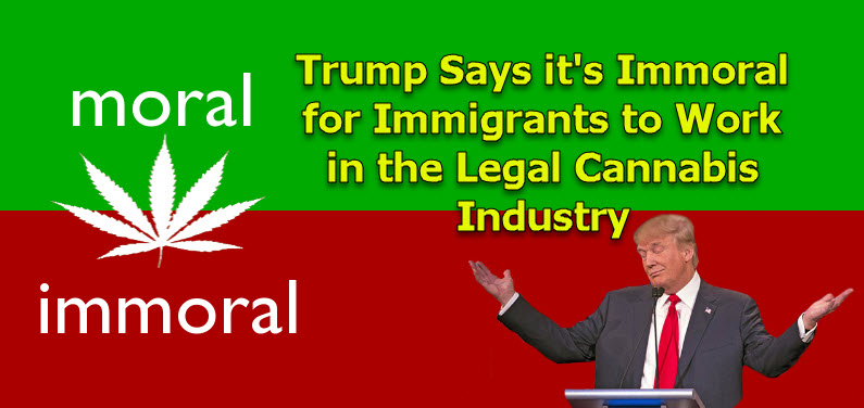 Trump on Immigrants and cannabis