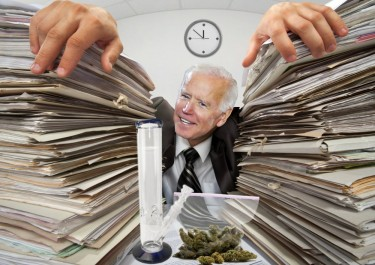 BIDEN TOO BUSY TO LEGALIZE WEED