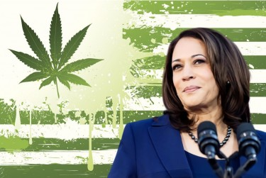 KAMALA HARRS VP ON WEED