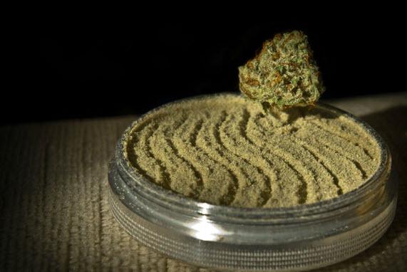 kief cannabis dust