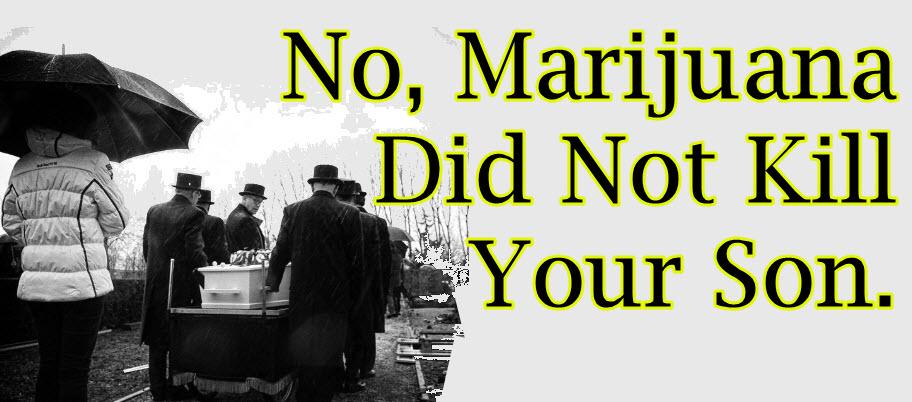 marijuana killed my son