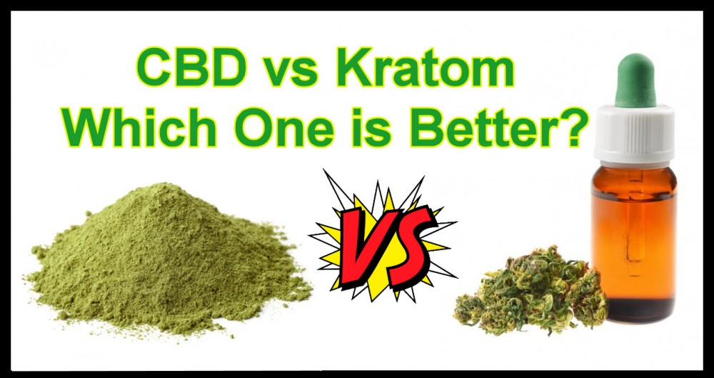 krotomorcbd - What You Need to Know about Kratom - What is It?
