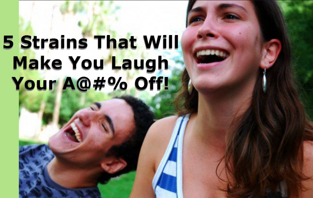 MARIJUANA THAT MAKES YOU LAUGH