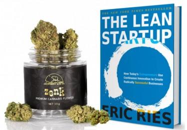 cannabis lean startup