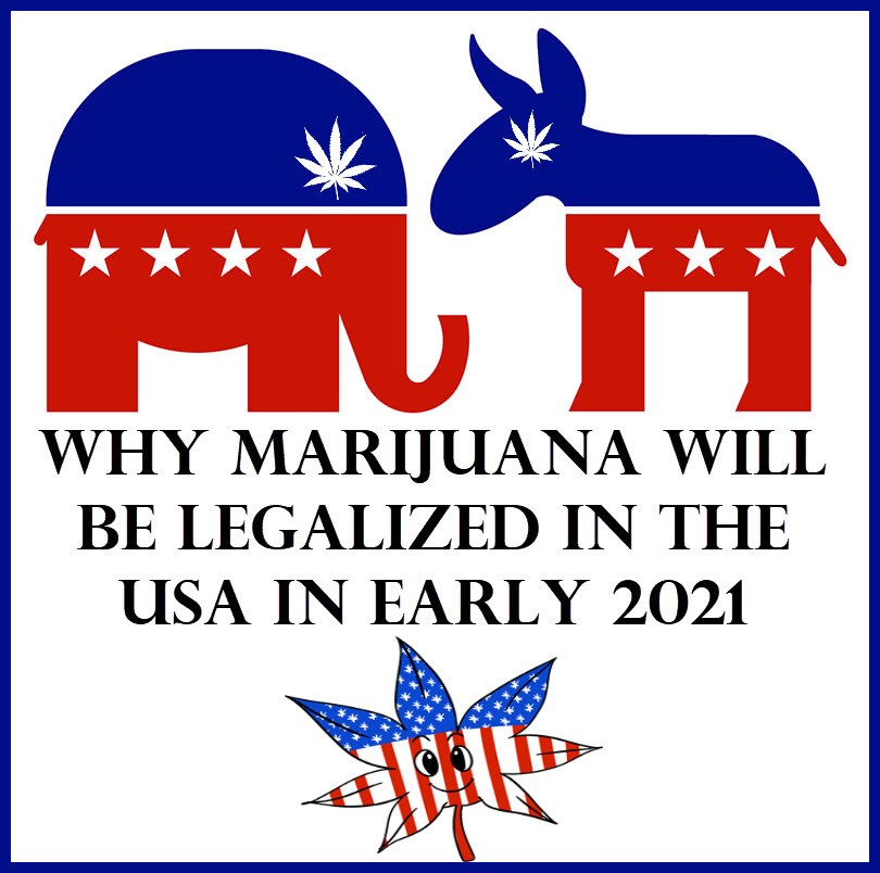 CANNABIS LEGALIZED IN 2021?