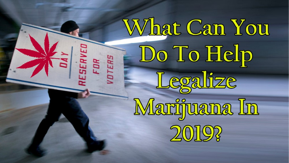 what can you do to help cannabis legalization