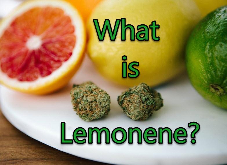 limonene cannabis terpenes