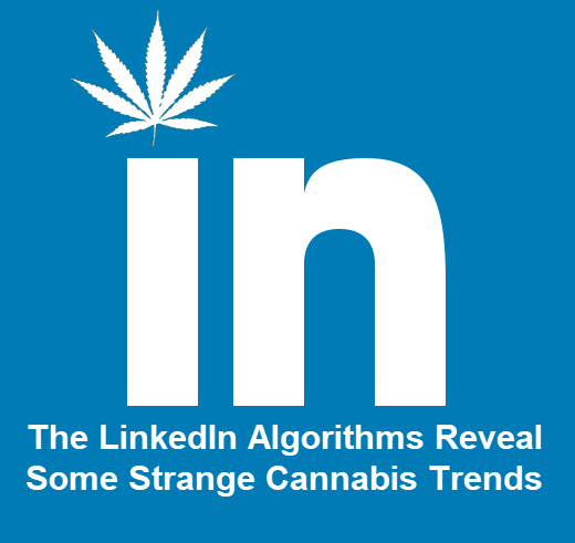 linkedincannabis   Copy 1 - Medical Marijuana and Personality Disorders - Does it Work?