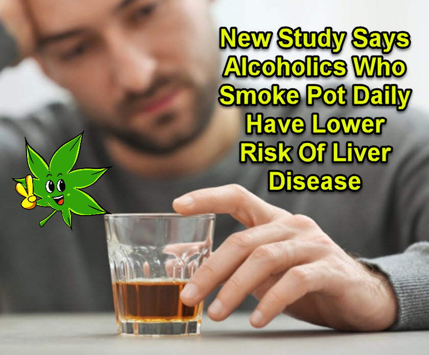 cannabis for alcoholics