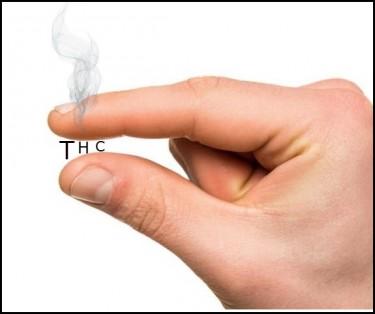 low thc marijuana