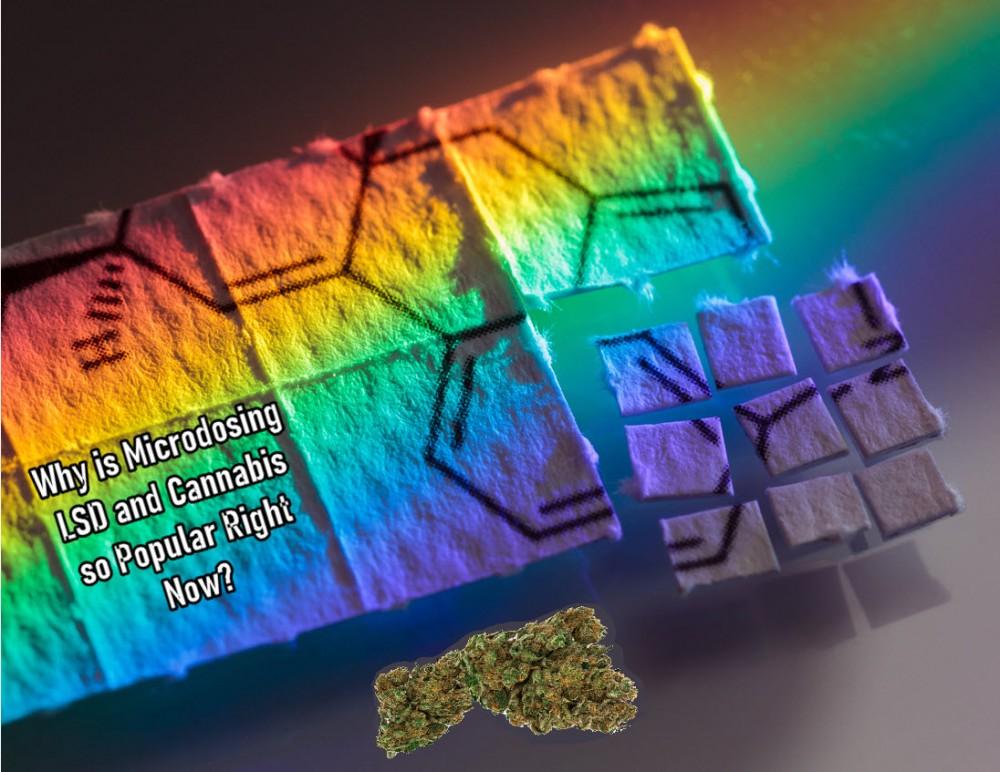 MICRODOSING CANNABIS WITH LSD