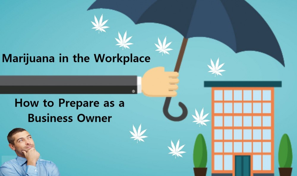 BUSINESS OWNERS AND MARIJUANA LAWS