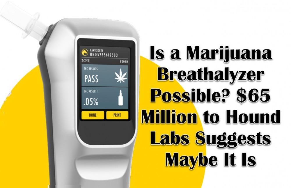 marijuana breathalyzer hound labs