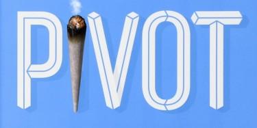 marijuana industry pivots