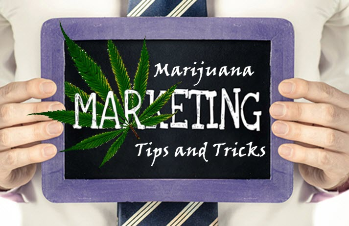 marijuana marketing online