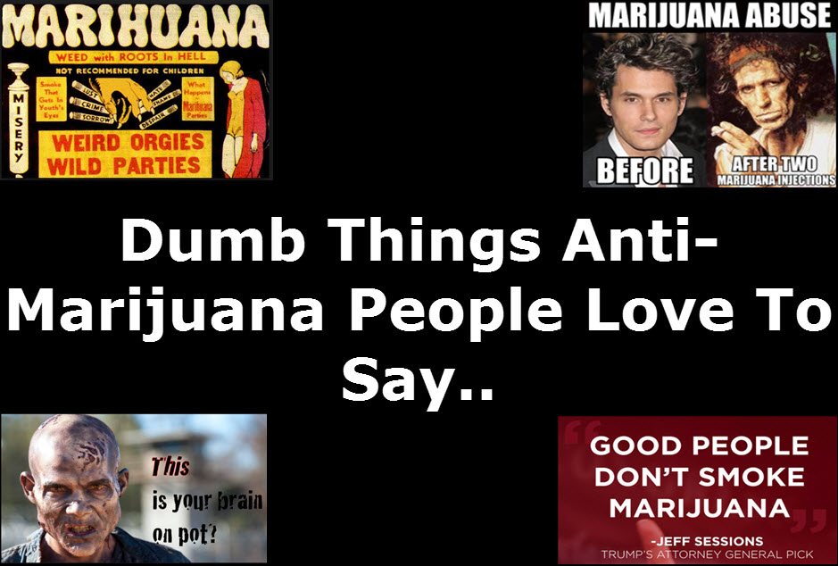 DUMB THINGS ABOUT WEED