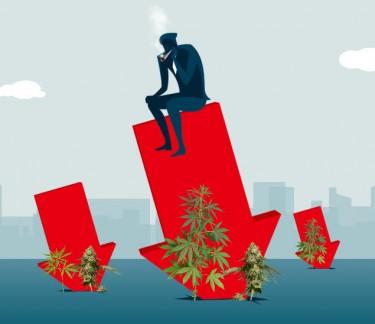 marijuana recession proof ideas