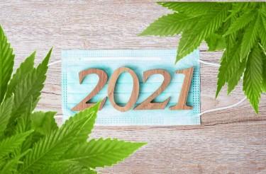marijuana in 2021 resolutions
